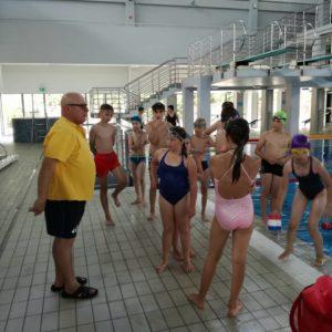 fregata swimming